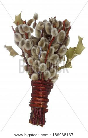 a pussywillow as traditional religion symbol on white background