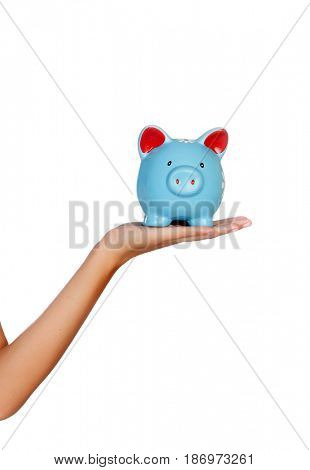 Female hand holding a blue moneybox isolated on a white background