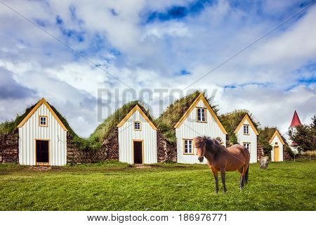 Ethnographic Museum-estate Glaumbaer, Iceland. The picturesque village of old houses covered with turf and grass. The concept of the ethnographic and cultural tourism