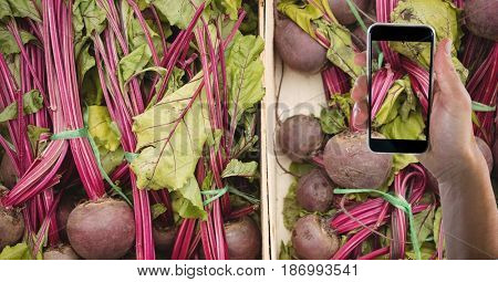 Digital composite of Hand taking picture of beets with mobile phone in grocery store
