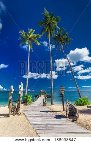 Tropical beach scene with coconut palm trees and jetty, South Pacific islands, Samoa