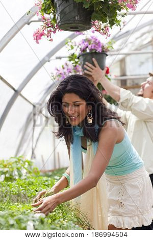 Couple shopping together in plant nursery