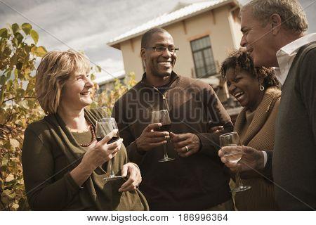 Friends drinking wine in vineyard