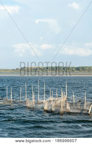 traditional fish trap in the baltic sea