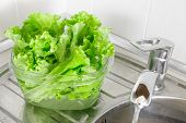 Fresh lettuce leaves soaked in transparent plastic bowl to remove pesticides residues prepare for cooking. Healthy organic vegetable food diet concept poster