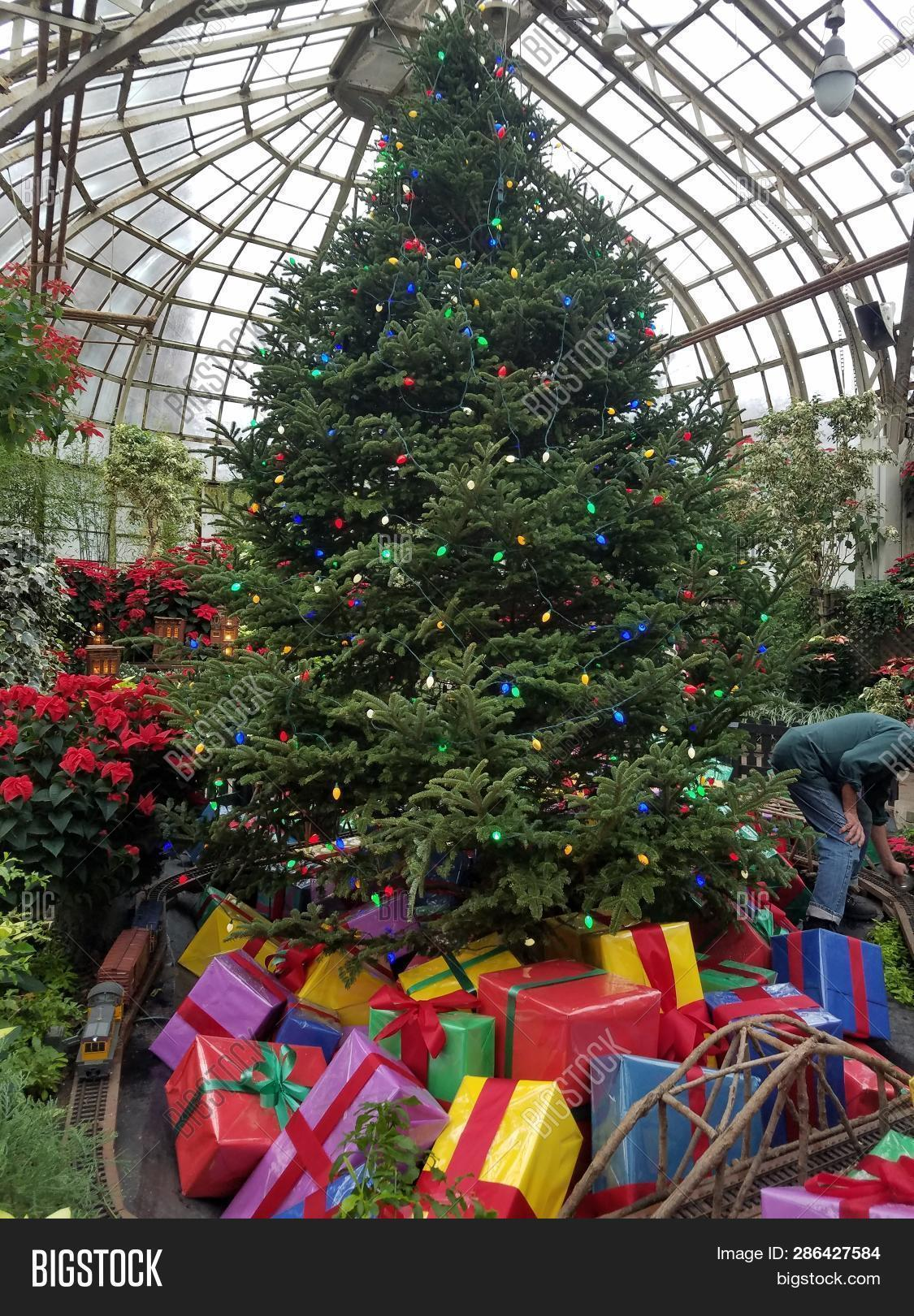 Christmas In Chicago 2018.Chicago Il November Image Photo Free Trial Bigstock