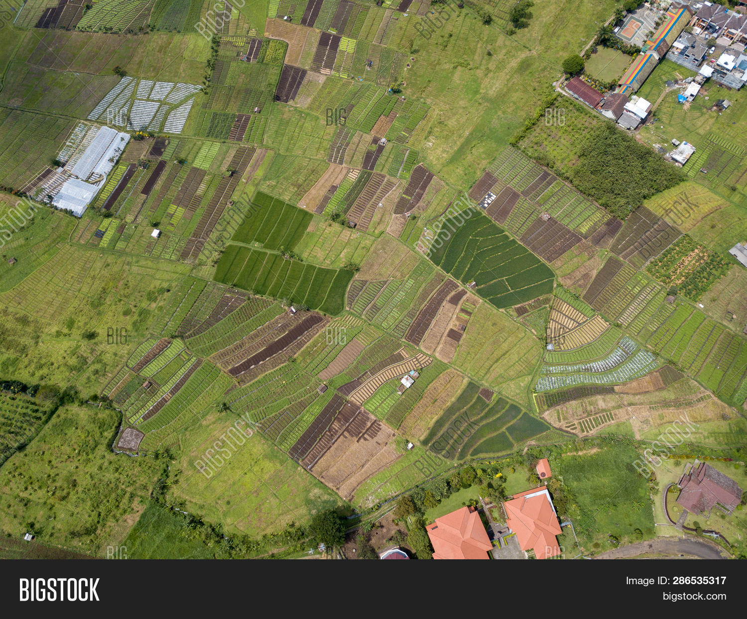 Aerial View Forest Image Photo Free Trial Bigstock