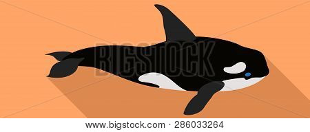 Orca Whale Icon. Flat Illustration Of Orca Whale Vector Icon For Web Design