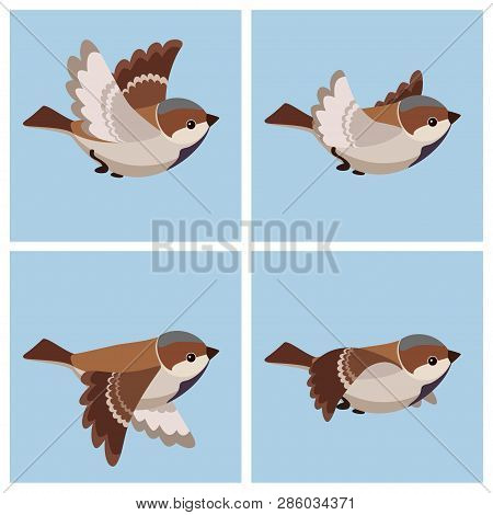 Vector Illustration Of Cartoon Flying House Sparrow (male) Sprite Sheet. Can Be Used For Gif Animati