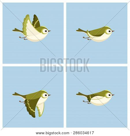 Vector Illustration Of Cartoon Flying Goldcrest (female) Sprite Sheet. Can Be Used For Gif Animation