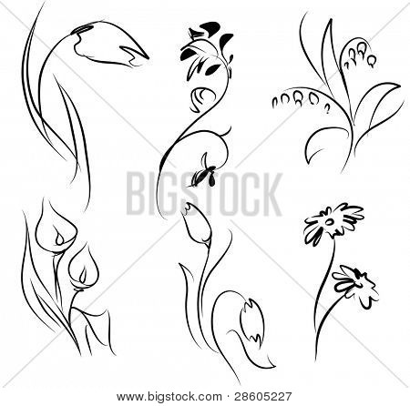 Linear silhouettes of flowers