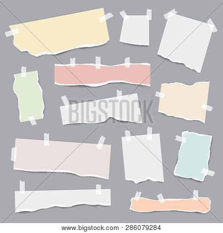 Taped Paper. Ripped Pieces Of White And Colored Note Pages Vector Realistic Template. Lllustration O