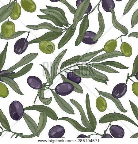 Natural Seamless Pattern With Olive Tree Branches, Leaves, Black And Green Ripe Fruits Or Drupes On