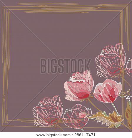 Pink Poppy Flower On Brown Background Frame Card