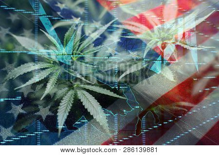 United States Marijuana Industry Investing High Quality Stock Photo