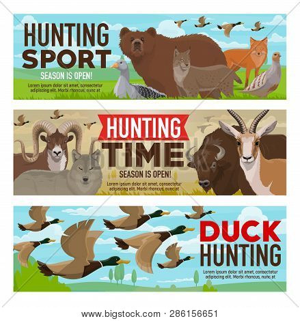 Hunting Open Season, Wild Animals And Birds Hunt Adventure. Vector Hunter Feathery And Hoofed Trophy