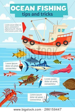 Fishery Boat, Ocean And Sea Fishing. Vector Fisherman Ship With Net And Big Catch Of Marlin, Flounde