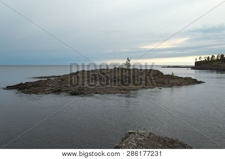 Lonely Little Pine On A Rock. The Rock Is A Part Of Valaam Island In The North Of Ladoga Lake