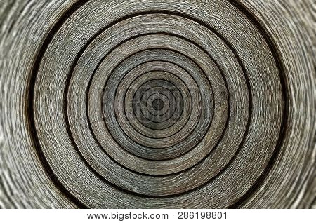 The Round Old Wood Texture/ Wood Texture