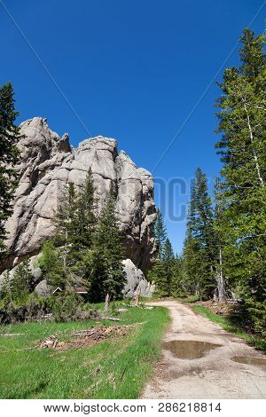 The Road Leading To The Trailhead For Little Devils Tower Rock Feature In Custer State Park In The B