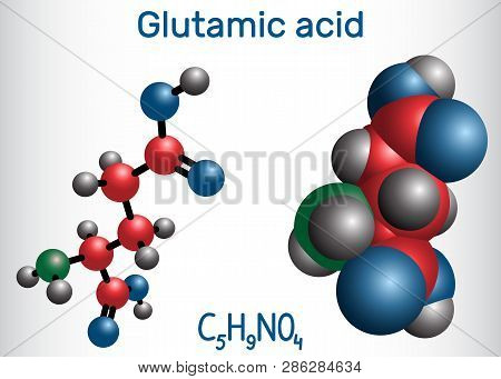 Glutamic Acid (l- Glutamic Acid, Glu, E) Aliphatic Amino Acid Molecule.  Molecule Model. Vector Illu