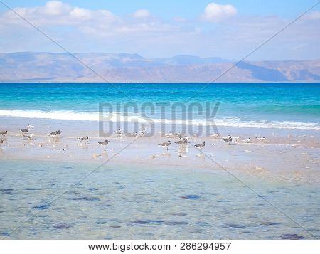 Sea Coast Of Yemen, Empty Sea Beach. Sea Coast Of Yemen, Empty Sea Beach.