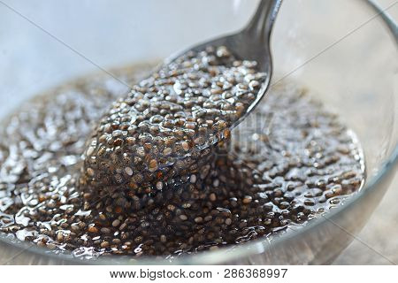 Spoon Of Chia Seed In Water, Close Up