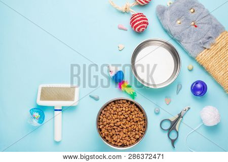 Pets And Cute Animals, Pets, Cute Cats, Food And Accessories For Cat's Life, Flat Lay, Space For A D