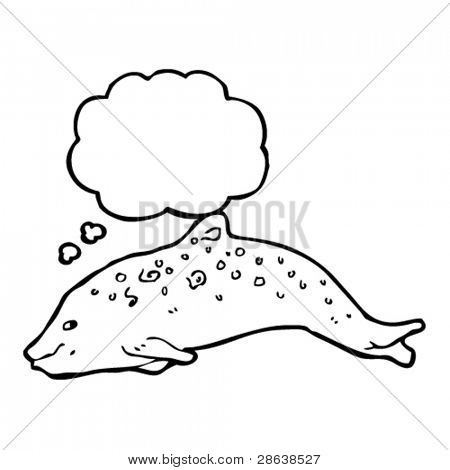 porpoise illustration with thought bubble