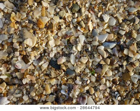 Sand Of The Sea