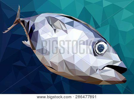 Illustration 3d Low Polygon Drawing Of Tuna Fish.