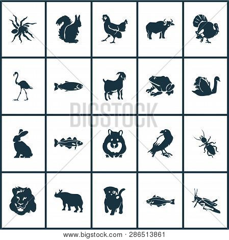 Fauna Icons Set With Grasshopper, Lion, Puppy And Other Hen Elements. Isolated Vector Illustration F