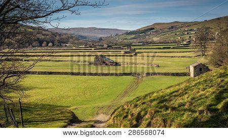 Old Barns In Swaledale