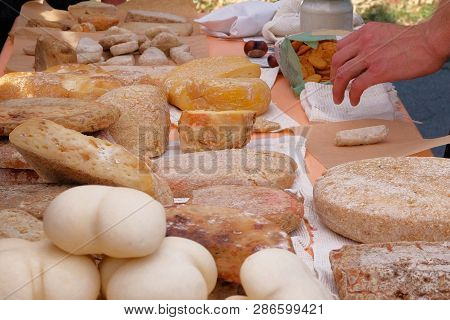 Diversity Of Varieties Traditional Domestic Cheeses For Sale On Rural Farming Market. Cheese Manufac