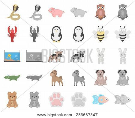 An Unrealistic Cartoon, Monochrom Animal Icons In Set Collection For Design. Toy Animals Vector Symb