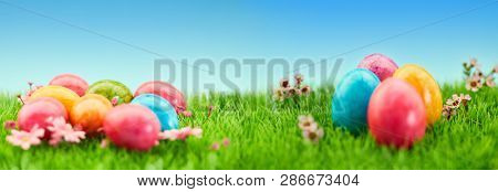 Many colorful easter eggs in the grass on a meadow for Easter as a panorama header