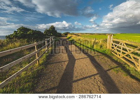 Countryside road with wooden fence. Northern Ireland landscape. The country driveway passing through the green grass fields. Horizon view. Blue cloudy sky background. Stunning Irish scene.