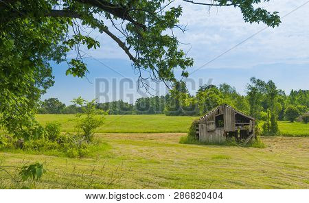 Old Barn In A Hayfield With Trees