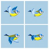 Vector illustration of cartoon flying Blue Tit sprite sheet. Can be used for GIF animation poster