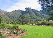 FROM CAPE TOWN, SOUTH AFRICA, KIRSTENBOSCH BOTANICAL GARDEN, WITH A GREEN LAWN IN THE FORE GROUND AND A MOUNTAIN IN THE BACK GROUND poster