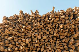 Firewood Logs Piled On To A Heap, Drying In The Sun. Natural Texture. Horizontal Composition, Cross