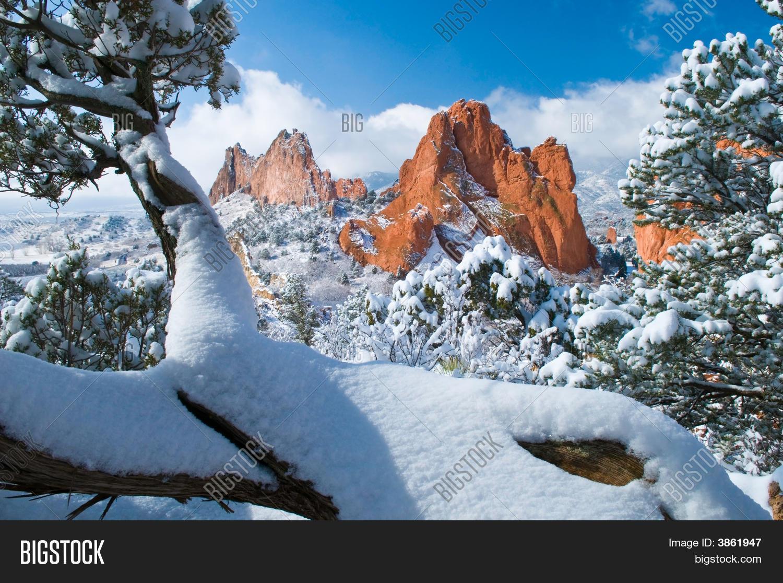 Fresh Snow Garden Image Photo Free Trial Bigstock