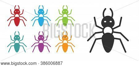 Black Ant Icon Isolated On White Background. Set Icons Colorful. Vector