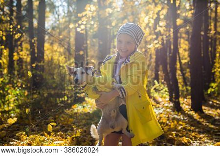 Little Girl Playing With Her Dog In Autumn Forest. Child And Jack Russell Terrier Dog.