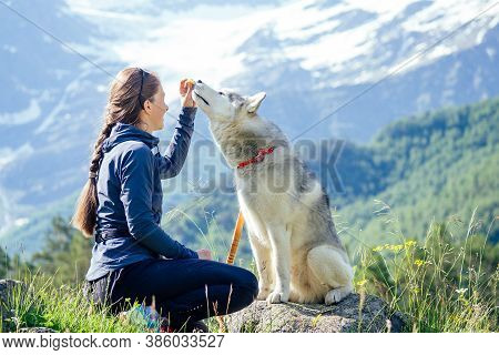 Dog With A Woman Walking Mountains Outdoors