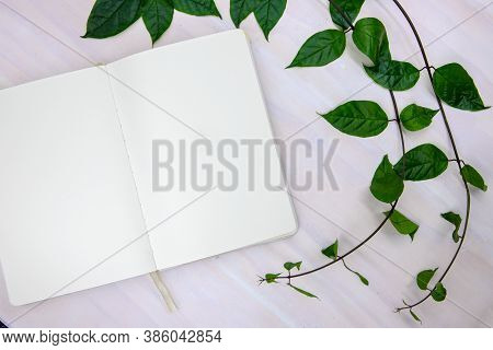 Blank Sketch Book With White Paper And Green Branch On Wooden Table. Empty Notebook Top View. Romant
