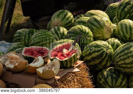 Pile Of Watermelons. Heap Of Watermelon At Farmers Market. Watermelon Cut With A Knife. Cut Melon
