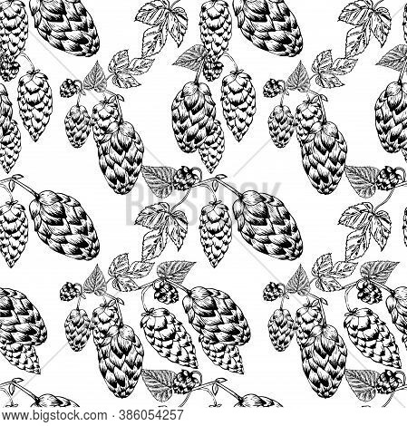 Hop Monochrome Seamless Pattern. Art Design Element Hand Drawn Stock Vector Illustration For Web, Fo