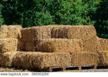 Hay Bales Stacked In A Row Rhythmically Sorted Yellow Hay Bales Ready To Feed Cows Agriculture And A