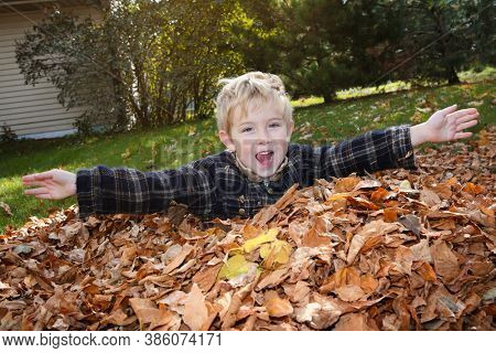 Young smiling boy playing in a leaf pile